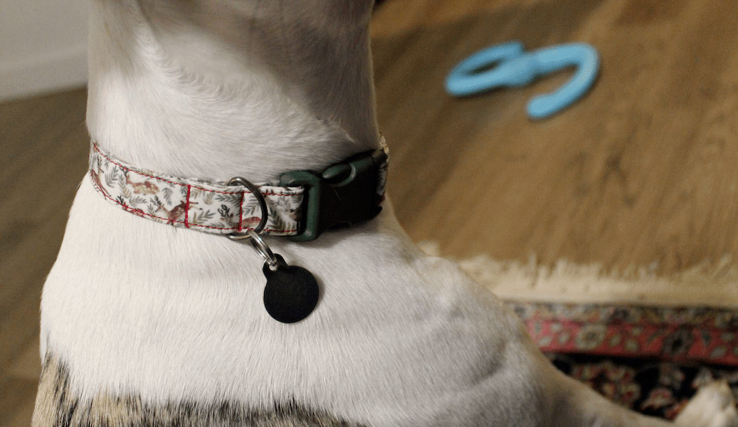 Handmade DIY dog collar reindeer 3