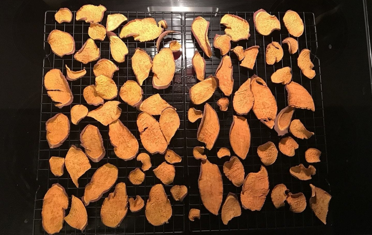 homemade-dog-treat-yams-dried-1-e1515980026581.jpg