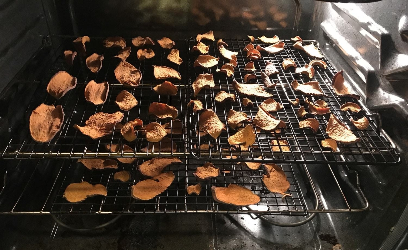 Homemade dog treat yams dried in oven