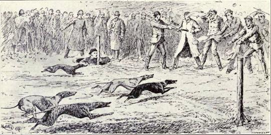 Old-time_whippet_race_from_1915.JPG