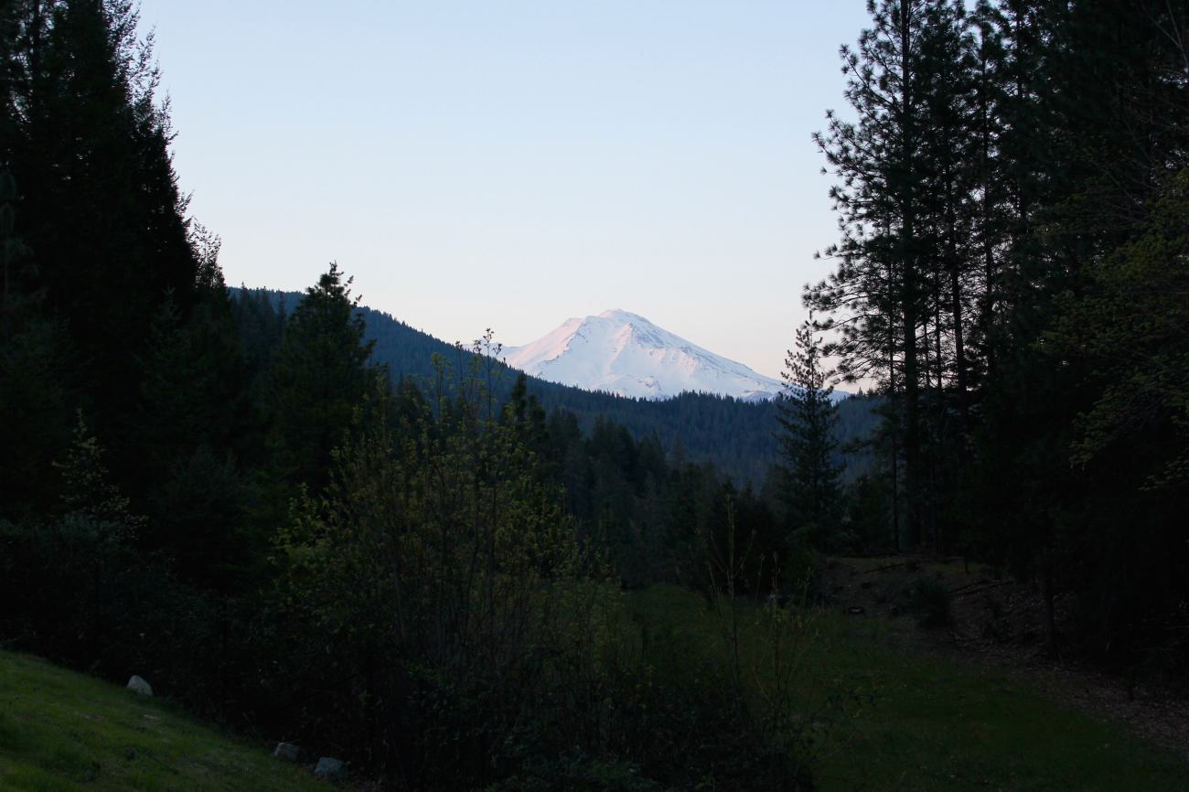 mt shasta viewpoint
