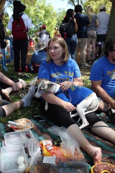 picnic day dog nap 7-min